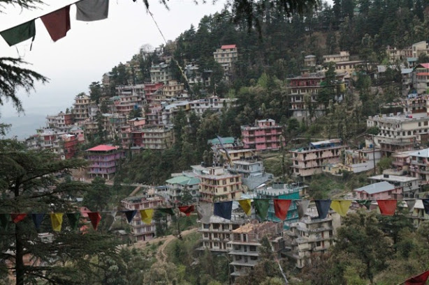 mcleodganj guesthouses, dharamsala guesthouses