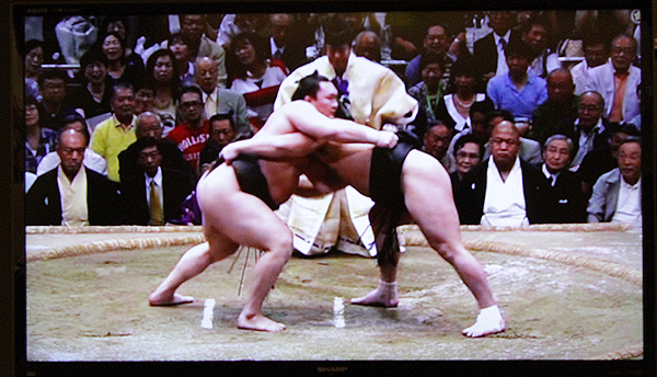 sumo tournaments, ryogaku, Getting Around Tokyo on the cheap and easy