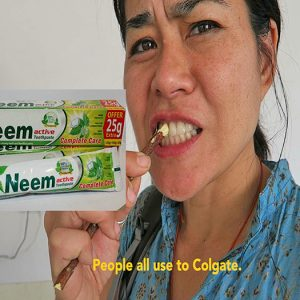 souvenir shopping in india, neem stick, shopping in india, what to buy in India