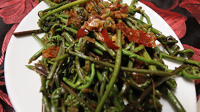miri salad with fiddle ferns