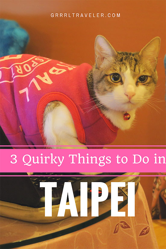 quirky things to do taipei, taipei attractions