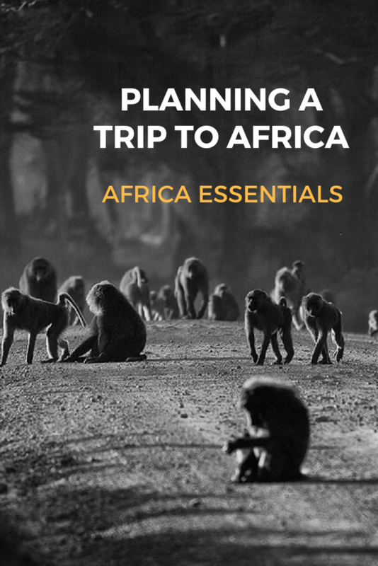 Planning a Trip to Africa Africa Essentials 2 e1499672961171