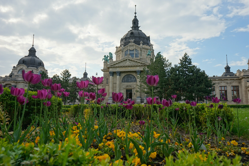 Szechenyi Baths Exterior, budapest travel guide