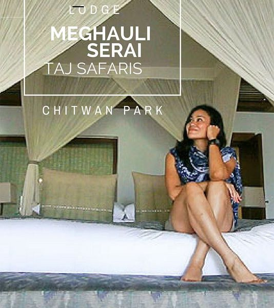 Meghauli Serai Taj Safaris Lodge, chitwan national park, taj safaris review