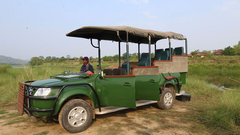 Jeep safari chitwan National Park
