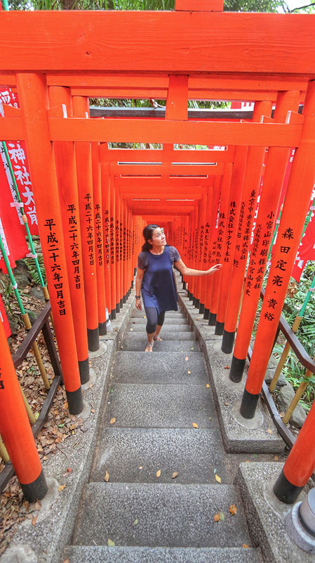 red Torii Gates at Hie Temple