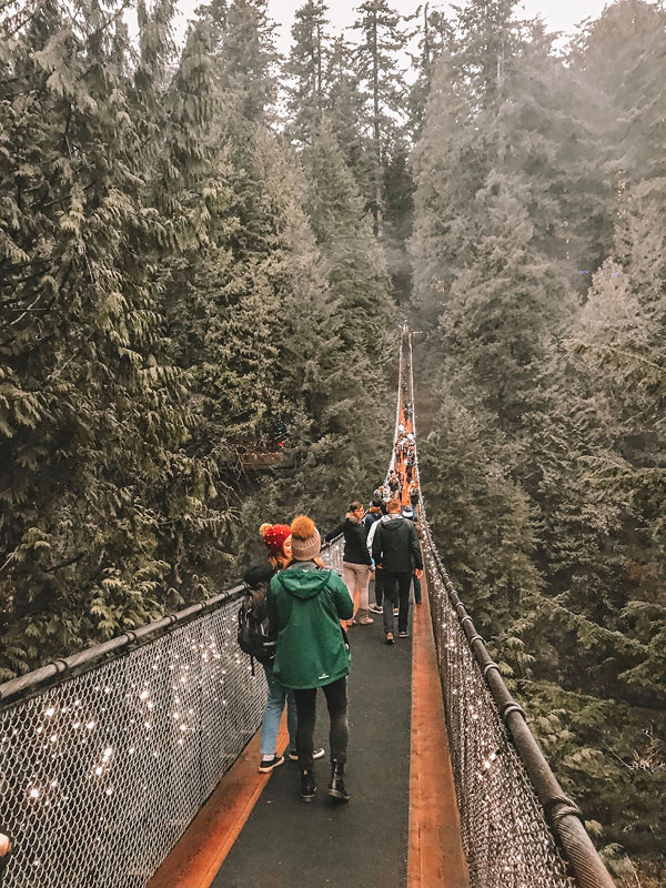 capilano suspension bridge, best things to do in vancouver, vancouver travel guide