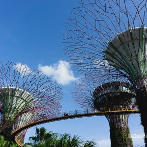 Singapore Gardens by the Bay day